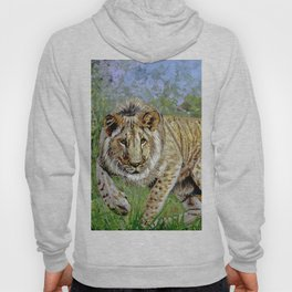 Lion oil painting Hoody