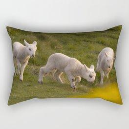 three little lambs Rectangular Pillow