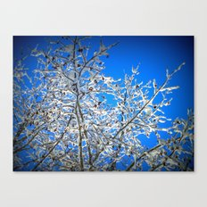 White Branches, Blue Sky Canvas Print