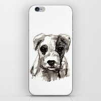 puppy iPhone & iPod Skins featuring Puppy  by Cedric S Touati