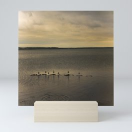 Segulls on the lake Mini Art Print