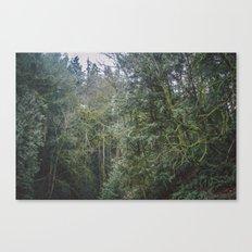 Northwest Canvas Print