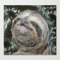 sloth Canvas Prints featuring Sloth by Bruce Stanfield