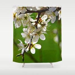 Wild cherry blossoms Shower Curtain