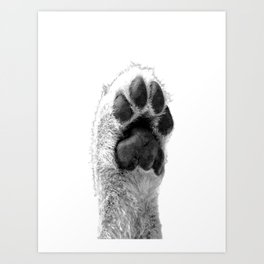 Black and White Dog Paw Art Print