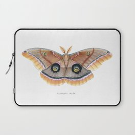 Polyphemus Moth Laptop Sleeve