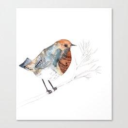 Rockin' Robin Canvas Print
