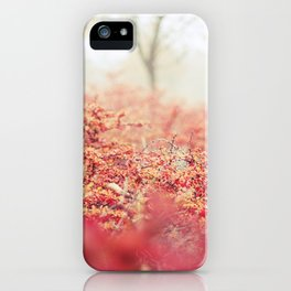 Fog in the Bushes iPhone Case