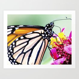 Fly About the World Art Print