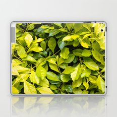 Too much green leaves Laptop & iPad Skin