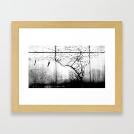 Birds and the Trees Framed Art Print
