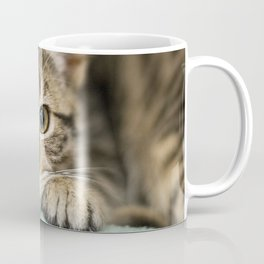Sweet Kitty Coffee Mug