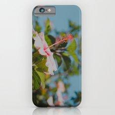 Soft Pink Hibiscus iPhone 6s Slim Case