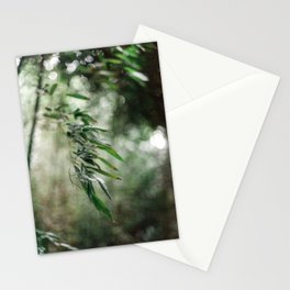 Bamboo leaves | Nature photography | Fine art photography | Art Print Stationery Cards
