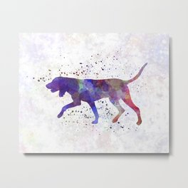 Black and Tan Coonhound in watercolor Metal Print