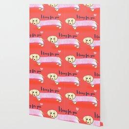 Valentine's Day dachshund dog Wallpaper