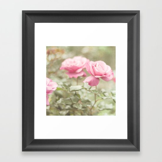 Textured and Pastel roses (vintage flower photography) Framed Art Print