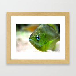 little green guy Framed Art Print