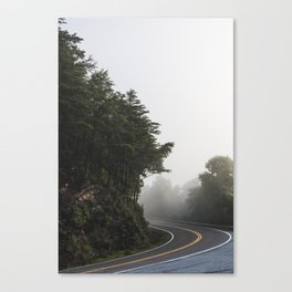 Roadway in Georgia #fog #nature #scene Canvas Print