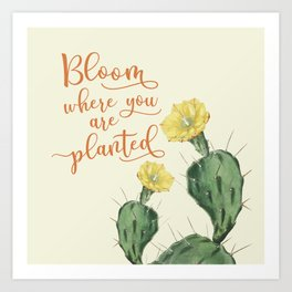 Bloom Where you are Planted Cactus Art Print
