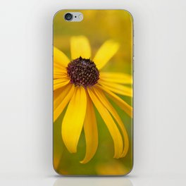 Yellow Flower on a Soft Background iPhone Skin