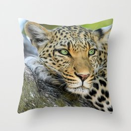 A Leopards Gaze 2 Throw Pillow