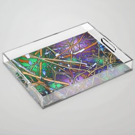The Twiggs Theory of the Universe Acrylic Tray