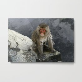 macaque monkey at jigokudani monkey park, nagano, japan Metal Print