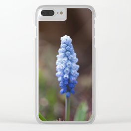 Ombre Clear iPhone Case