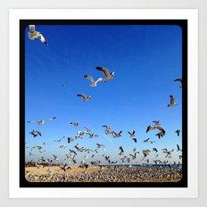 Fly, birds, fly! Art Print