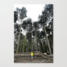 Through The Woods II Canvas Print