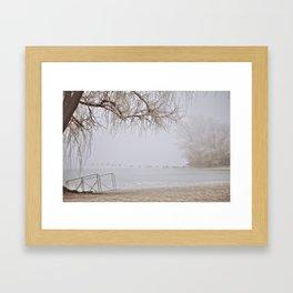 Frozen Ducks Framed Art Print