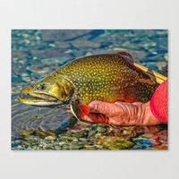 trout Canvas Prints featuring Trout by Edward M. Fielding