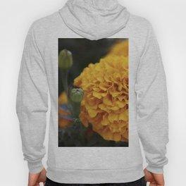Flor de Cempasuchil Hoody