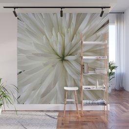 Chrysanthemum Heart Wall Mural