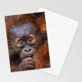 Extraordinary Animals - Orang Baby Stationery Cards