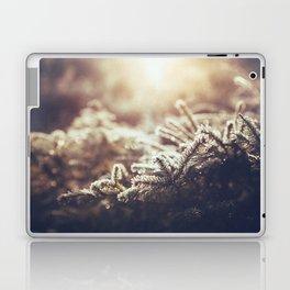 Hint of Winter Laptop & iPad Skin
