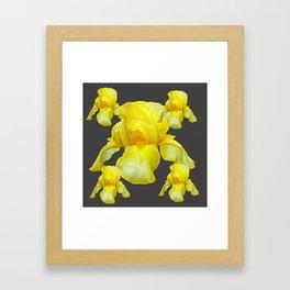 YELLOW SPRING IRIS  BOTANICALS ON GREY Framed Art Print