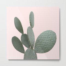 Cactus Pink Photography Metal Print