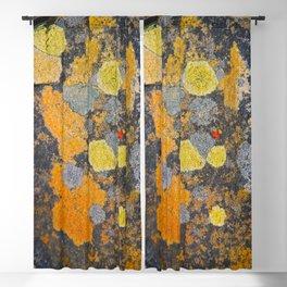 Lichen Art Blackout Curtain