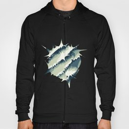 Explosions in the water Hoody