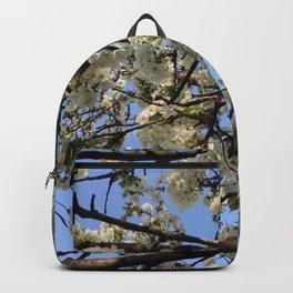 spring in Belgrade Backpack
