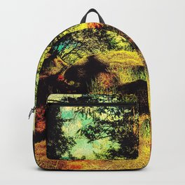 Magic Place, Stoney Hill, Vancouver Island Backpack