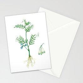 Lentil Stationery Cards