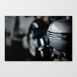 Triumphant Canvas Print