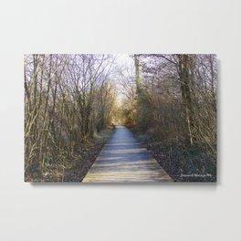 Bridge of Solitude Metal Print
