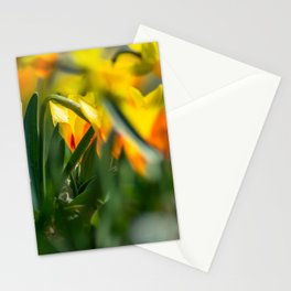 Tulips by the roadside Stationery Cards