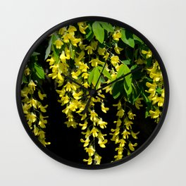 GOLDEN CHAIN TREE LABURNUM ALPINUM Wall Clock