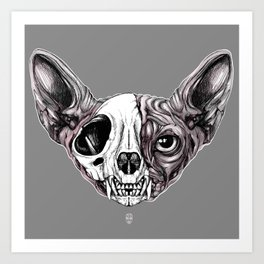 Shynx Half Skull Art Print