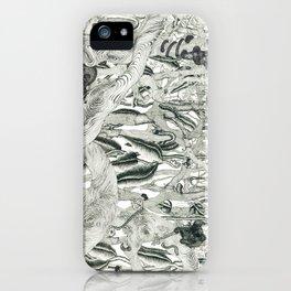 Jungle Scene iPhone Case